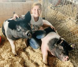 kaylee miller pig fair